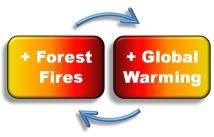 causas y efectos cambio climatico